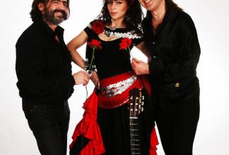 Zigeuner-Band Trio `Esmeralda & Talisman`